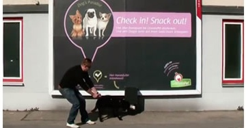 Granata Pet Experiential Billboard