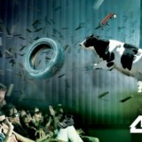 4dx-banner